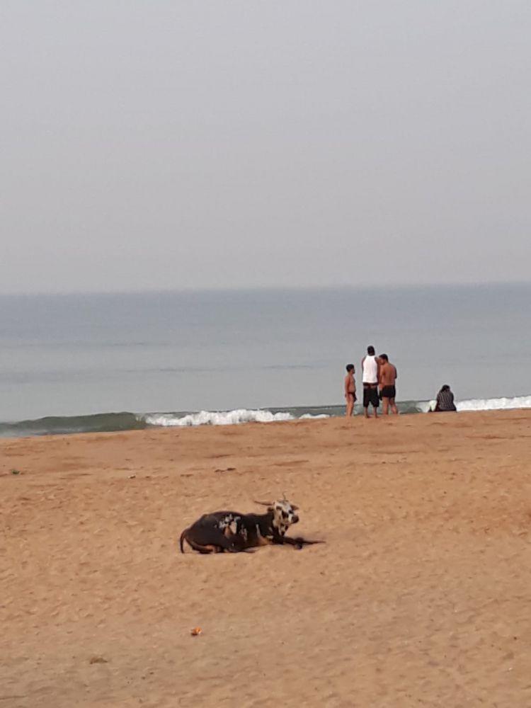 Memoria per India anno zero: l'arrivo a Gokarna, nel Karnataka