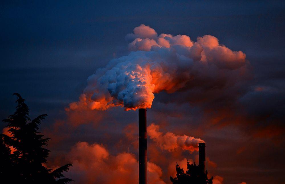 Memoria per Allarme pianeta: dieci anni per il non ritorno