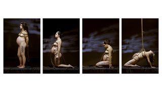 Memoria per Evolution: una maternità avvinta