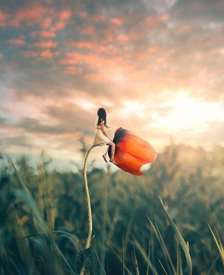 """Memoria per """"L'emozione della bellezza"""": magia di Elisa Grilli"""