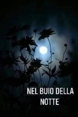 Memoria per Nel buio della notte