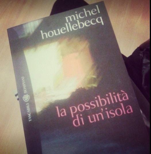 """Memoria per Il magnifico Houllebecq di """"La possibilità di un'isola"""""""