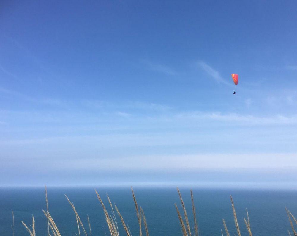 Memoria per Silvia Gelosi - Respirare nuotando il mare